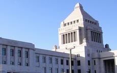 国会議事堂 ビジネスランチ会画像